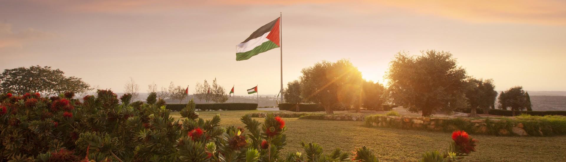 Why Palestine?